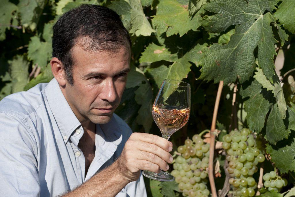 Franck Thomas dans les vignes avec un verre de vin